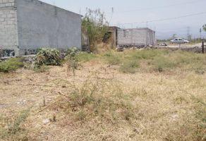 Foto de terreno habitacional en venta en Vicente Estrada Cajigal, Yautepec, Morelos, 20605066,  no 01