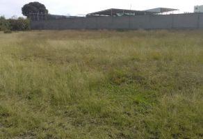 Foto de terreno industrial en renta en Las Animas, Amozoc, Puebla, 16430501,  no 01