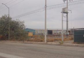 Foto de terreno comercial en renta en Ciudad Industrial, Torreón, Coahuila de Zaragoza, 20802752,  no 01