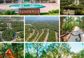 Foto de terreno habitacional en venta en Ejidal, Solidaridad, Quintana Roo, 20456545,  no 01