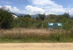 Foto de terreno habitacional en venta en Santa Maria Del Tule, Santa María del Tule, Oaxaca, 21733544,  no 01