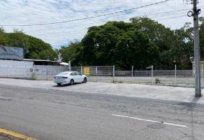 Foto de terreno comercial en renta en El Tecolote, Colima, Colima, 16783322,  no 01