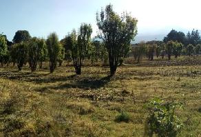 Foto de terreno habitacional en venta en San Andrés Hueyacatitla, San Salvador el Verde, Puebla, 15668461,  no 01