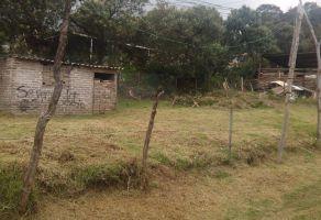 Foto de terreno habitacional en venta en San Juan (San Pablo Oztotepec), Milpa Alta, DF / CDMX, 10128003,  no 01