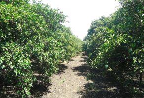 Foto de rancho en venta en Bella Vista 4to Sector, Cadereyta Jiménez, Nuevo León, 15389949,  no 01