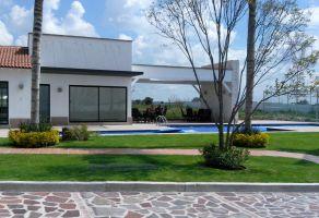 Foto de terreno habitacional en venta en Centro, León, Guanajuato, 6036838,  no 01