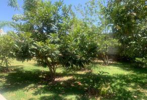 Foto de terreno habitacional en venta en 8 norte 261, jesús tlatempa, san pedro cholula, puebla, 18603700 No. 01