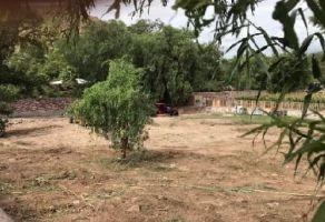 Foto de terreno habitacional en venta en San Juan, Santa María del Río, San Luis Potosí, 20635135,  no 01
