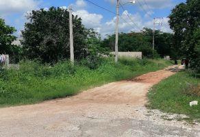 Foto de terreno habitacional en venta en Tixcacal Opichen, Mérida, Yucatán, 15482767,  no 01