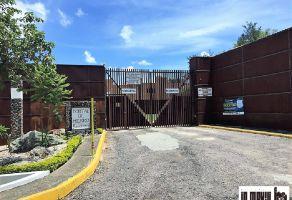 Foto de terreno habitacional en venta en San Andres Huayapam, San Andrés Huayápam, Oaxaca, 21572303,  no 01