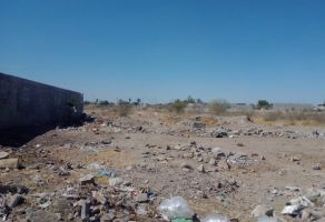 Foto de terreno comercial en venta en San Agustin, Torreón, Coahuila de Zaragoza, 19350628,  no 01