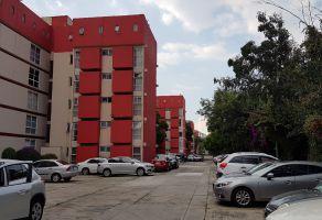 Foto de departamento en renta en Rincón del Pedregal, Tlalpan, DF / CDMX, 15448994,  no 01