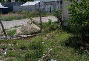 Foto de terreno habitacional en venta en Carlos Riva Palacio, Othón P. Blanco, Quintana Roo, 20742877,  no 01