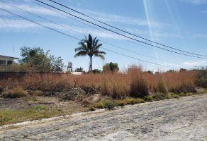 Foto de terreno habitacional en venta en Islas de Cuautla, Ayala, Morelos, 12610246,  no 01