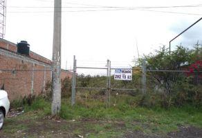 Foto de terreno habitacional en venta en Ignacio Allende, Morelia, Michoacán de Ocampo, 19731457,  no 01