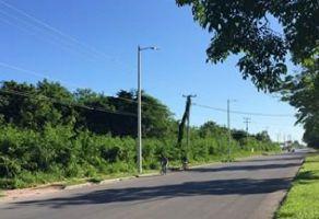 Foto de terreno comercial en venta en Maya Real, Othón P. Blanco, Quintana Roo, 7590495,  no 01