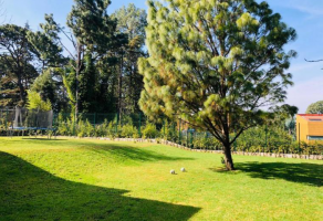Foto de terreno habitacional en venta en Avándaro, Valle de Bravo, México, 16684776,  no 01