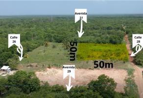 Foto de terreno habitacional en venta en Bacalar, Bacalar, Quintana Roo, 16402391,  no 01