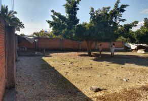 Foto de terreno habitacional en venta en 3 de Mayo, Emiliano Zapata, Morelos, 19730067,  no 01