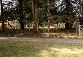 Foto de terreno habitacional en venta en Popo Park, Atlautla, México, 12809288,  no 01