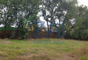 Foto de terreno habitacional en venta en San Martinito, San Andrés Cholula, Puebla, 9217626,  no 01