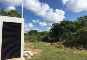 Foto de terreno habitacional en venta en 9 , santa gertrudis copo, mérida, yucatán, 0 No. 01