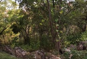Foto de terreno habitacional en venta en Cerro Lindavista, Guanajuato, Guanajuato, 20911470,  no 01