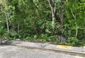 Foto de terreno habitacional en venta en Ejidal, Solidaridad, Quintana Roo, 20335998,  no 01