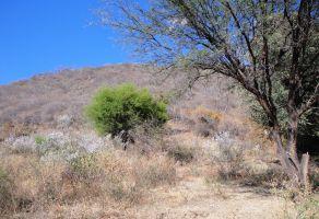 Foto de terreno habitacional en venta en Jardines de Tlajomulco, Tlajomulco de Zúñiga, Jalisco, 5102862,  no 01