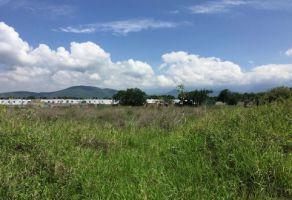 Foto de terreno habitacional en venta en Centro, Yautepec, Morelos, 16508505,  no 01