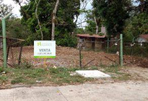 Foto de terreno habitacional en venta en La Trinidad Chica, Córdoba, Veracruz de Ignacio de la Llave, 5371781,  no 01