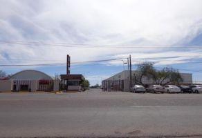 Foto de bodega en renta en La Manga, Hermosillo, Sonora, 21524137,  no 01