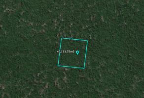 Foto de terreno habitacional en venta en Sierra Papacal, Mérida, Yucatán, 21043340,  no 01