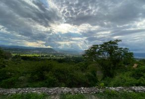 Foto de terreno habitacional en venta en San Gaspar, Jiutepec, Morelos, 21111251,  no 01