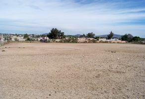 Foto de terreno habitacional en venta en Arboleda Bosques de Santa Anita, Tlajomulco de Zúñiga, Jalisco, 12718547,  no 01