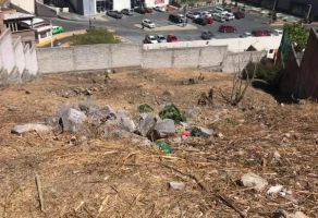 Foto de terreno habitacional en venta en Pozuelos, Guanajuato, Guanajuato, 20911484,  no 01