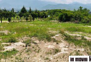 Foto de terreno habitacional en venta en Santa Maria Del Tule, Santa María del Tule, Oaxaca, 8218470,  no 01
