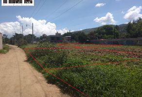 Foto de terreno habitacional en venta en Animas Trujano, Ánimas Trujano, Oaxaca, 21572242,  no 01