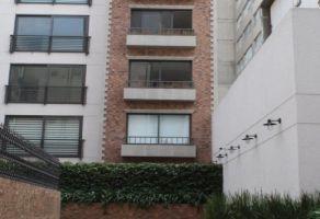 Foto de departamento en renta en Polanco IV Sección, Miguel Hidalgo, DF / CDMX, 13130572,  no 01