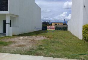 Foto de terreno habitacional en venta en Oaxaca Centro, Oaxaca de Juárez, Oaxaca, 10227685,  no 01