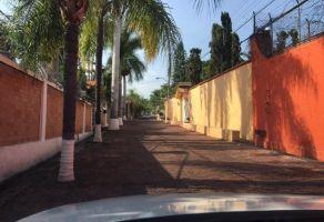 Foto de casa en renta en 3 de Mayo, Xochitepec, Morelos, 9840738,  no 01