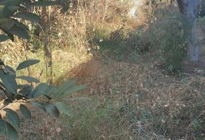 Foto de terreno habitacional en venta en Jardines de La Primavera, San Jacinto Amilpas, Oaxaca, 21641003,  no 01