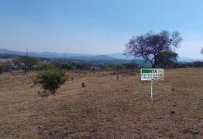 Foto de terreno habitacional en venta en Chiautla de Tapia, Chiautla, Puebla, 20521252,  no 01