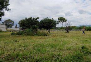 Foto de terreno habitacional en venta en San Diego Acapulco, Atlixco, Puebla, 21951851,  no 01