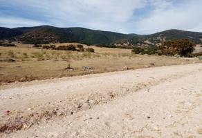 Foto de terreno habitacional en venta en a 500 metros de carretera paramericana , bimbo, aculco, méxico, 13292410 No. 01