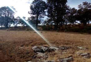 Foto de terreno habitacional en venta en a 500 mts de carretera panamericana , bimbo, aculco, méxico, 13292408 No. 01