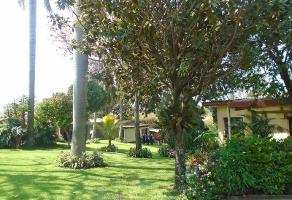 Foto de terreno habitacional en venta en a a, jardines de cuernavaca, cuernavaca, morelos, 6188852 No. 01