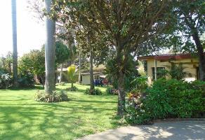 Foto de terreno habitacional en venta en a a, jardines de cuernavaca, cuernavaca, morelos, 0 No. 01