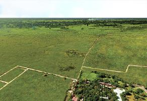Foto de terreno comercial en venta en a a, mérida, mérida, yucatán, 6687473 No. 01