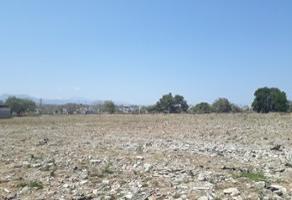 Foto de terreno habitacional en venta en a el guayabo 264, niños heroes, san pedro tlaquepaque, jalisco, 5342711 No. 01
